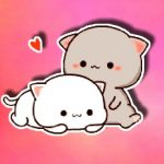 Cat Belly Rub