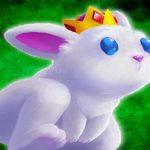 King Rabbit Puzzle